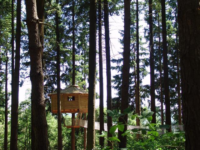 Glamping - Cabanes als arbres